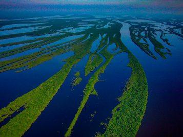visite amazônia
