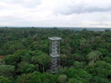 amazon-explorers-museu-amazonico-1
