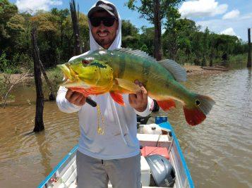 um pescador com tucunaré no rio negro